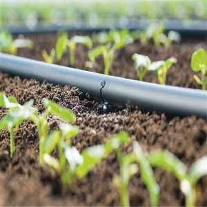 drip irrigation pipe cost