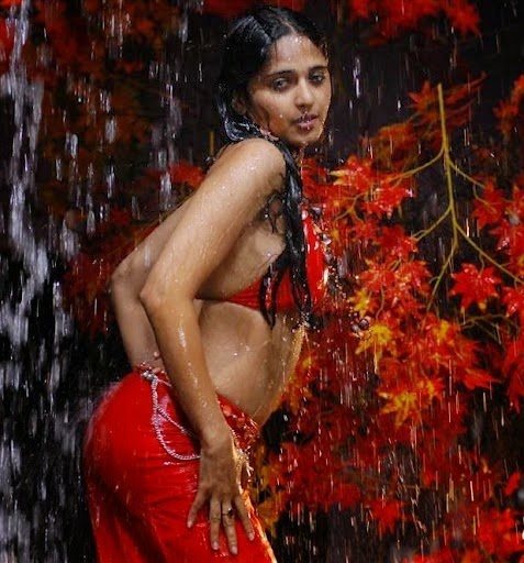 Anushka Shetty hot bikini stills